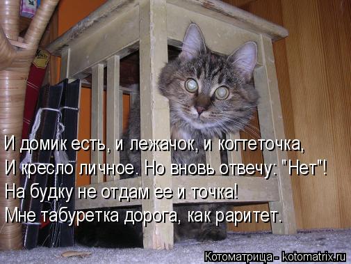 """Котоматрица: И домик есть, и лежачок, и когтеточка, И кресло личное. Но вновь отвечу: """"Нет""""! На будку не отдам ее и точка! Мне табуретка дорога, как раритет."""