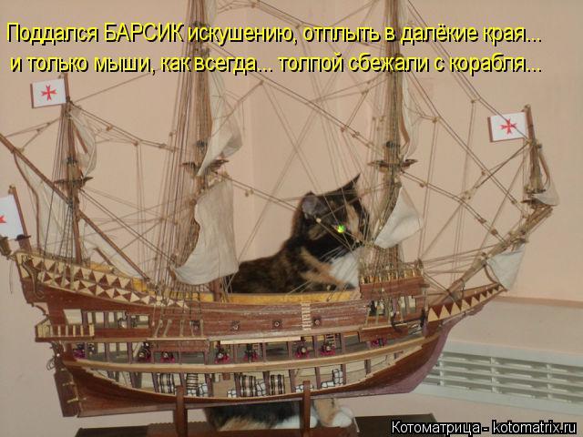 Котоматрица: Поддался БАРСИК искушению, отплыть в далёкие края... и только мыши, как всегда... толпой сбежали с корабля...