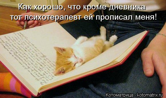 Котоматрица: Как хорошо, что кроме дневника тот психотерапевт ей прописал меня!