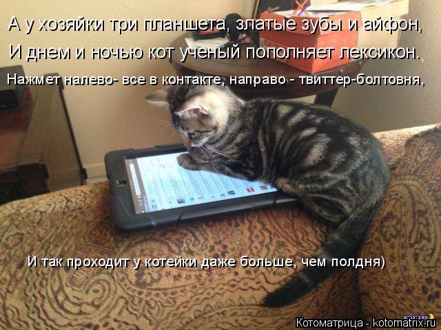 Котоматрица: А у хозяйки три планшета, златые зубы и айфон, И днем и ночью кот ученый пополняет лексикон. Нажмет налево- все в контакте, направо - твиттер-б