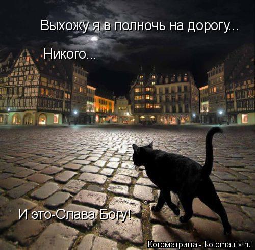 Котоматрица: Выхожу я в полночь на дорогу... Никого... И это-Слава Богу!