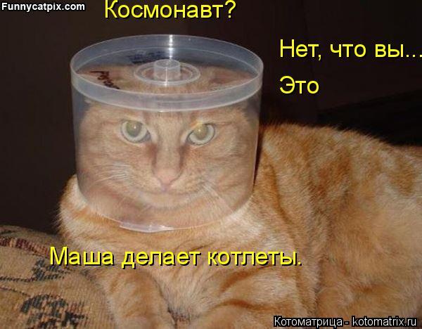Котоматрица: Космонавт? Нет, что вы... Это Маша делает котлеты.