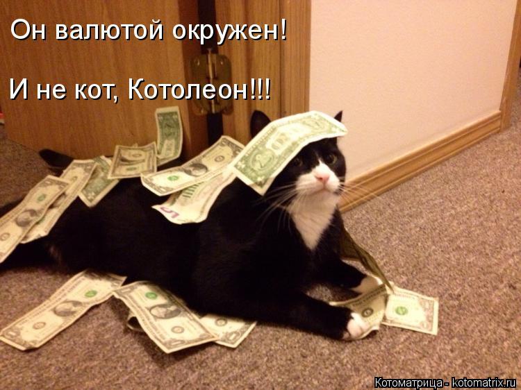 Котоматрица: Он валютой окружен! И не кот, Котолеон!!!