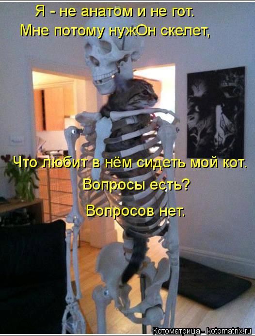 Котоматрица: Я - не анатом и не гот. Мне потому нужОн скелет, Что любит в нём сидеть мой кот. Вопросы есть? Вопросов нет.