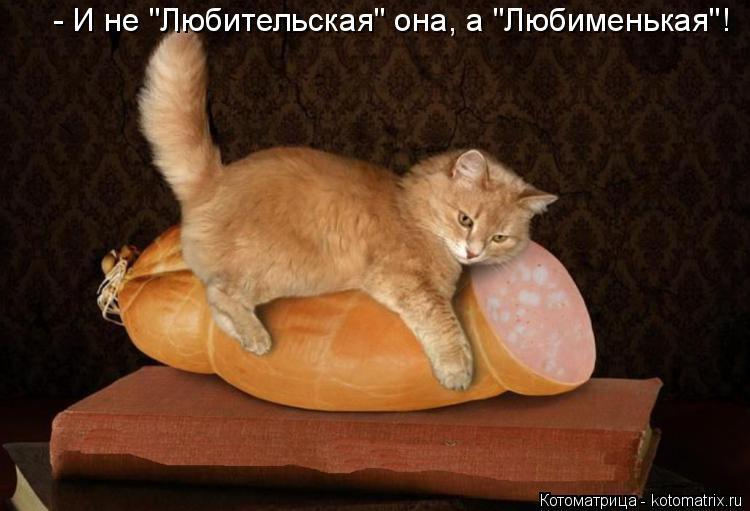 """Котоматрица: - И не """"Любительская"""" она, а """"Любименькая""""!"""