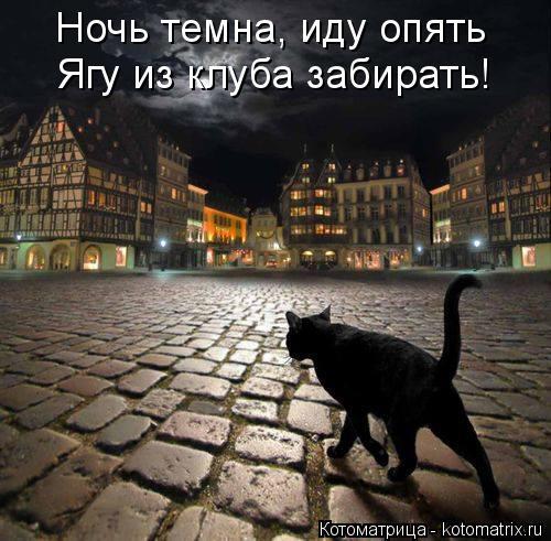Котоматрица: Ночь темна, иду опять Ягу из клуба забирать!