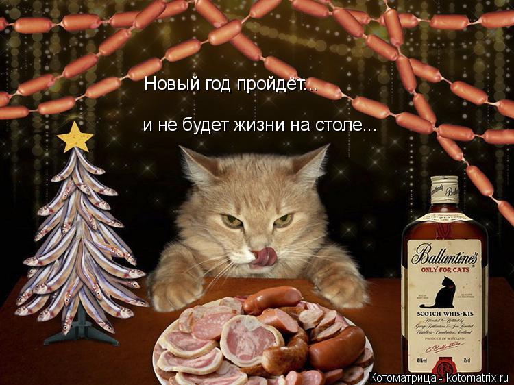 Котоматрица: Новый год пройдёт... и не будет жизни на столе...