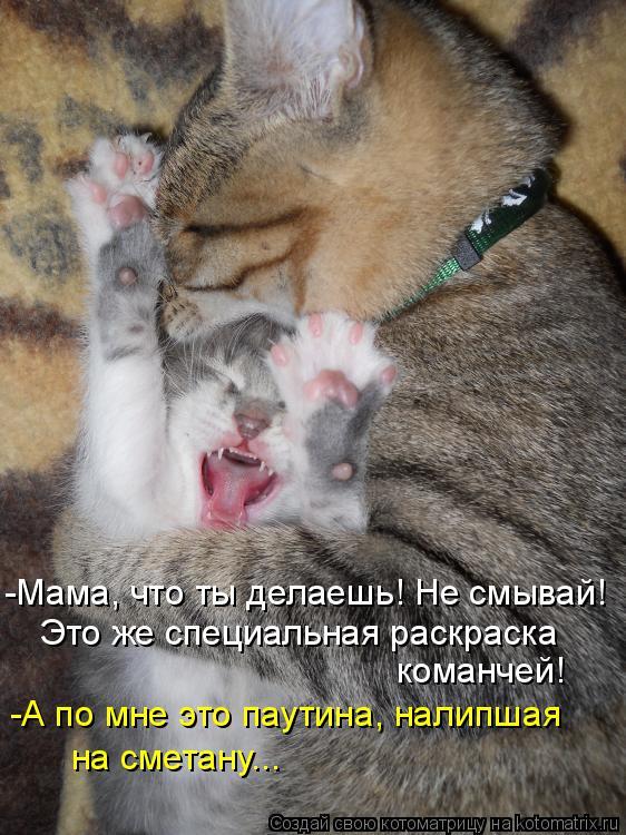 Котоматрица: -Мама, что ты делаешь! Не смывай! Это же специальная раскраска  команчей! -А по мне это паутина, налипшая на сметану...