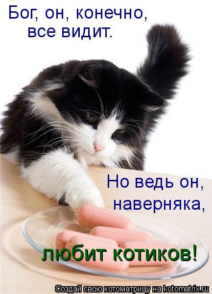 Котоматрица: Бог, он, конечно,  все видит. Но ведь он,  наверняка,  любит котиков!
