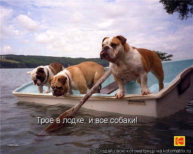 Котоматрица: Трое в лодке Трое в лодке, и все собаки!