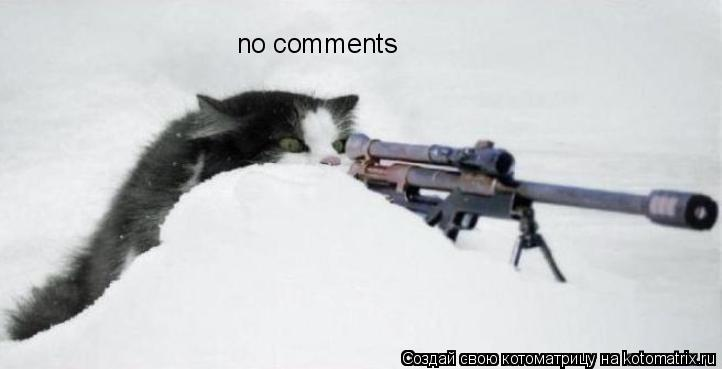 Котоматрица: no comments