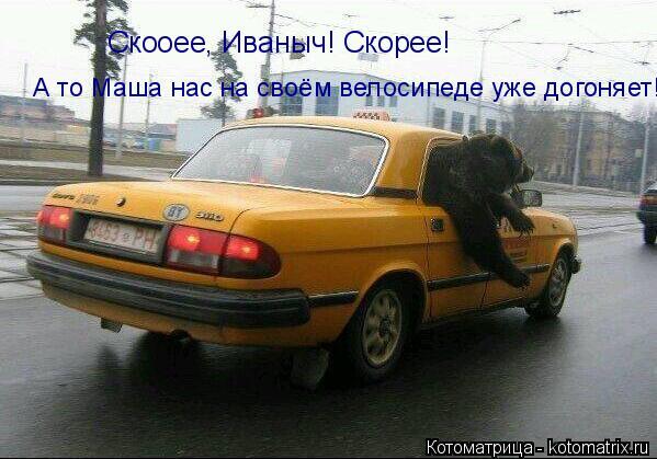 Котоматрица: Скооее, Иваныч! Скорее! А то Маша нас на своём велосипеде уже догоняет!