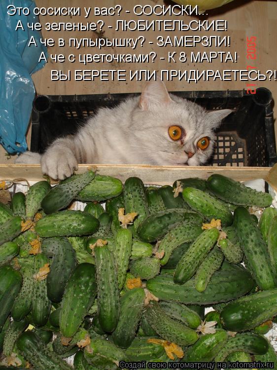 http://kotomatrix.ru/images/lolz/2014/03/11/kotomatritsa_JO.jpg