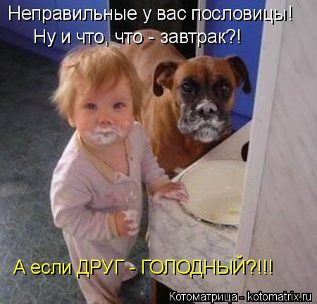 Котоматрица: Неправильные у вас пословицы! Ну и что, что - завтрак?! А если ДРУГ - ГОЛОДНЫЙ?!!!