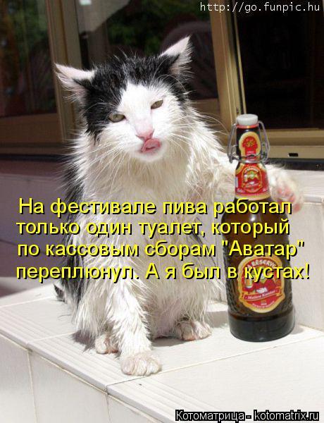 """Котоматрица: На фестивале пива работал только один туалет, который по кассовым сборам """"Аватар"""" переплюнул. А я был в кустах!"""