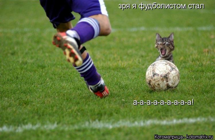 Котоматрица: зря я фудболистом стал  а-а-а-а-а-а-а-а-а!