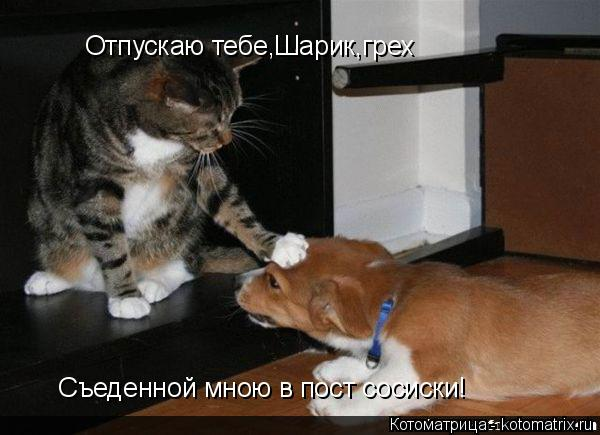 Котоматрица: Отпускаю тебе,Шарик,грех Съеденной мною в пост сосиски!