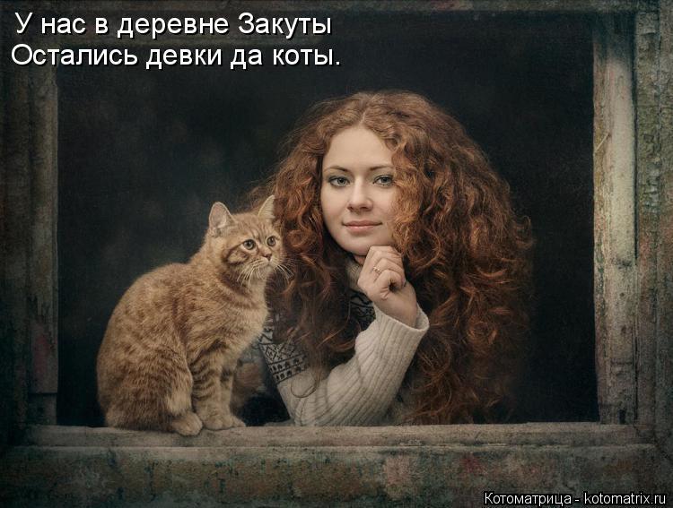 Котоматрица: У нас в деревне Закуты Остались девки да коты.
