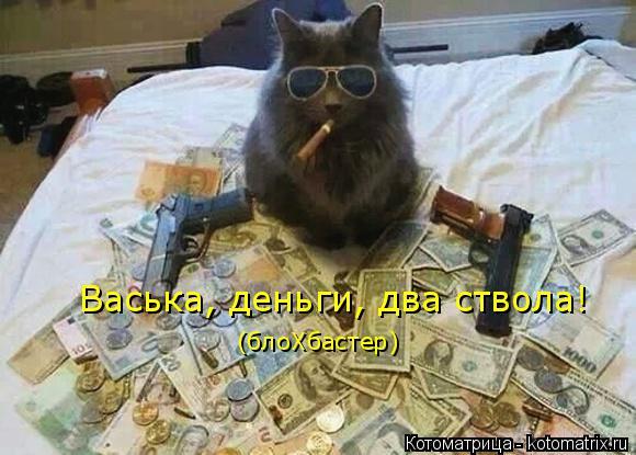Котоматрица: Васька, деньги, два ствола! (блоХбастер)