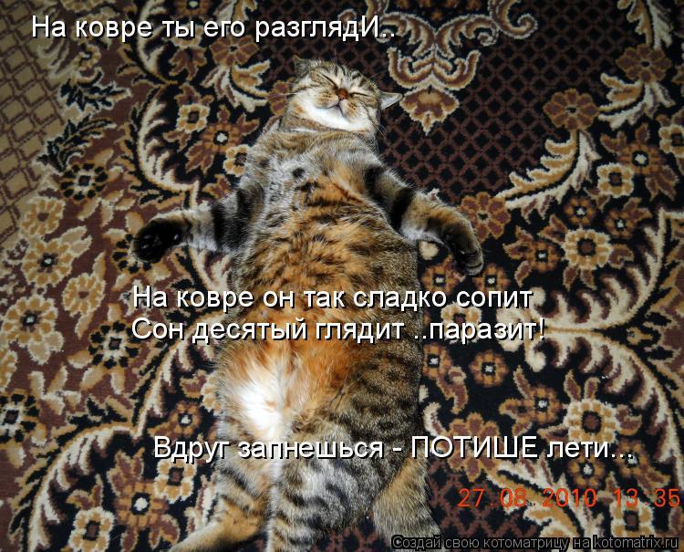 Котоматрица: На ковре ты его разглядИ.. На ковре он так сладко сопит Сон десятый глядит ..паразит! Вдруг запнешься - ПОТИШЕ лети...