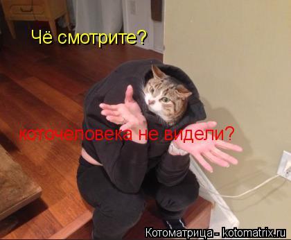 Котоматрица: Чё смотрите? коточеловека не видели?