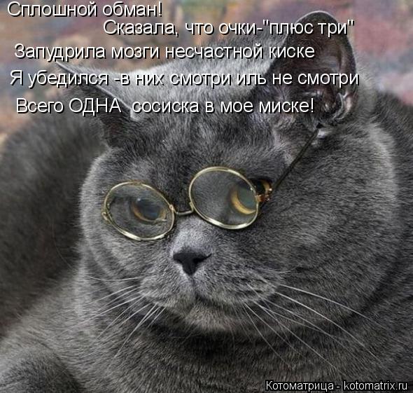 """Котоматрица: Сплошной обман!  Сказала, что очки-""""плюс три"""" Запудрила мозги несчастной киске Я убедился -в них смотри иль не смотри Всего ОДНА  сосиска в мо"""