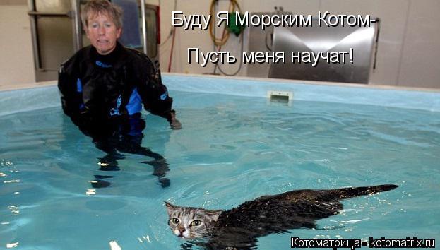 Котоматрица: Буду Я Морским Котом- Пусть меня научат!