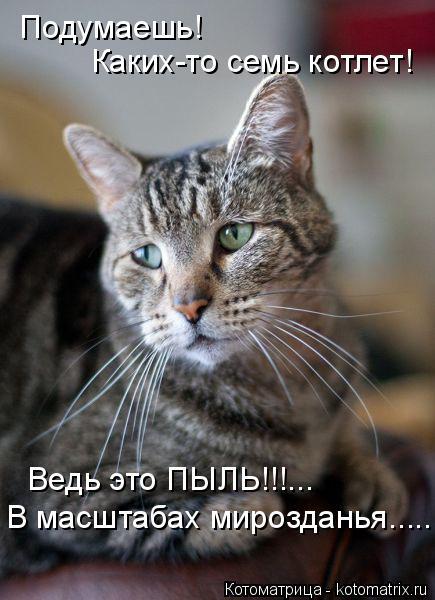 Котоматрица: Подумаешь! Каких-то семь котлет! Ведь это ПЫЛЬ!!!... В масштабах мирозданья.........