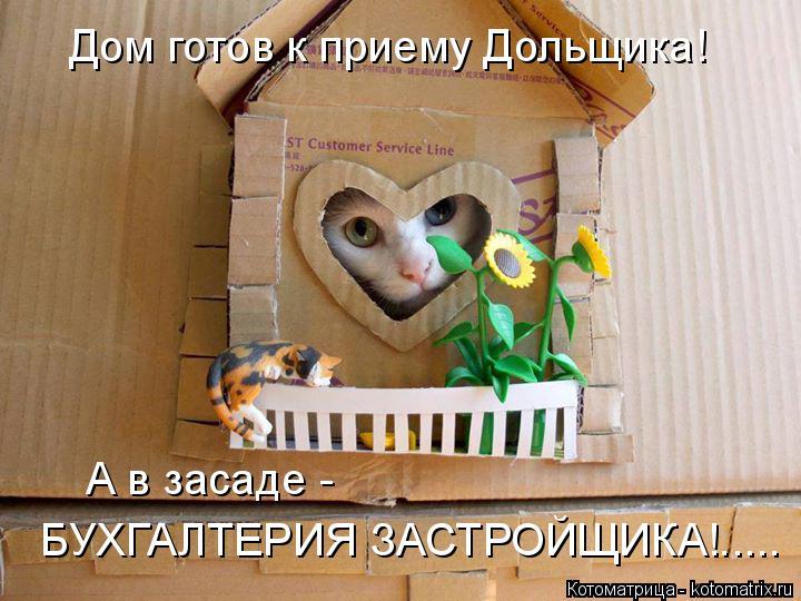Котоматрица: А в засаде -  БУХГАЛТЕРИЯ ЗАСТРОЙЩИКА!..... Дом готов к приему Дольщика!