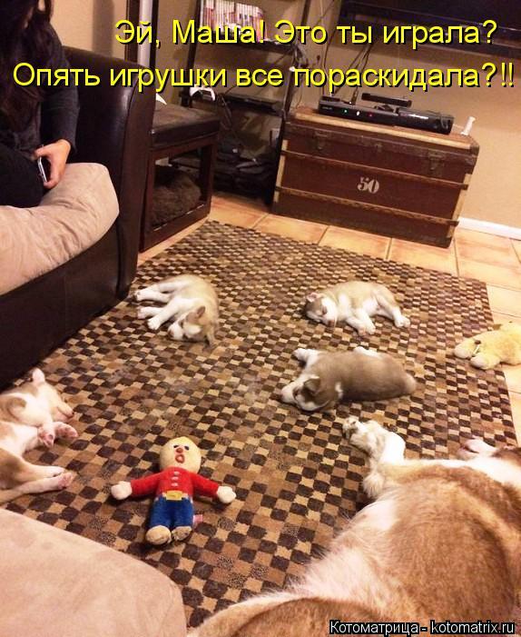 Котоматрица: Опять игрушки все пораскидала?!! Эй, Маша! Это ты играла?