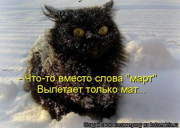 """Котоматрица: - Что-то вместо слова """"март"""" Вылетает только мат..."""