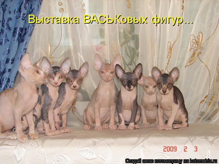 Котоматрица: Выставка ВАСЬКовых фигур...