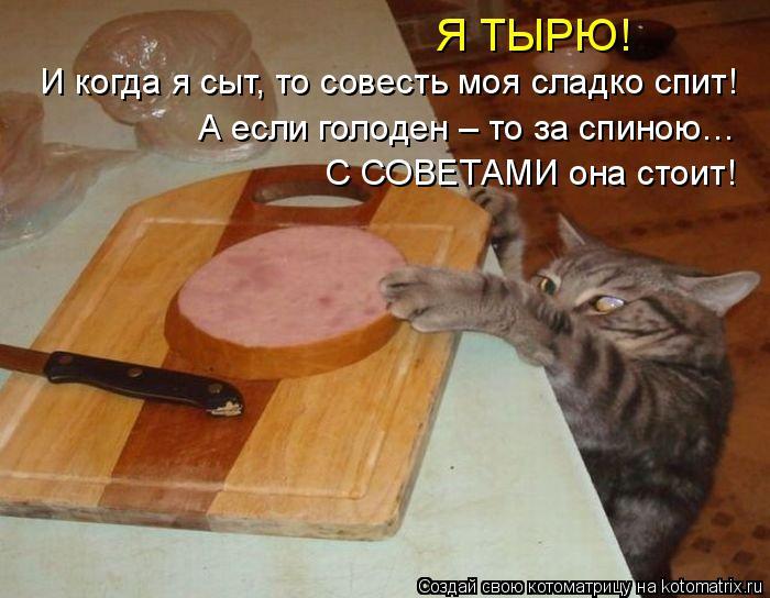 Котоматрица: Я ТЫРЮ! И когда я сыт, то совесть моя сладко спит! А если голоден – то за спиною…  С СОВЕТАМИ она стоит!