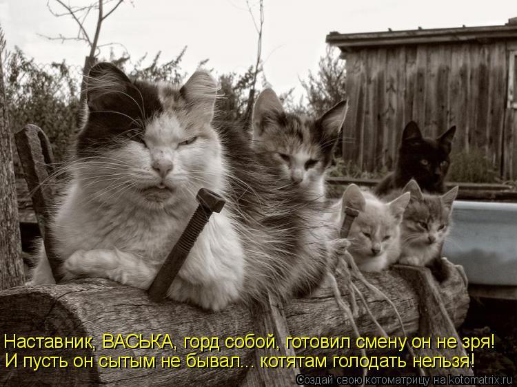 Котоматрица: Наставник, ВАСЬКА, горд собой, готовил смену он не зря! И пусть он сытым не бывал... котятам голодать нельзя!