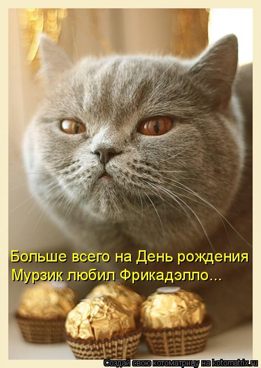Котоматрица: Больше всего на День рождения Мурзик любил Фрикадэлло...