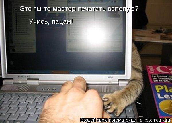 Котоматрица: - Это ты-то мастер печатать вслепую? Учись, пацан!