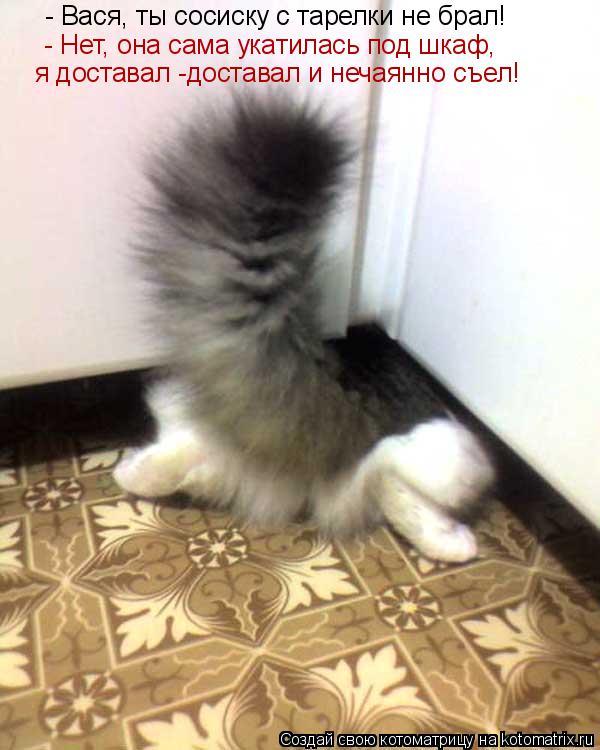 Котоматрица: - Вася, ты сосиску с тарелки не брал! - Нет, она сама укатилась под шкаф, я доставал -доставал и нечаянно съел!
