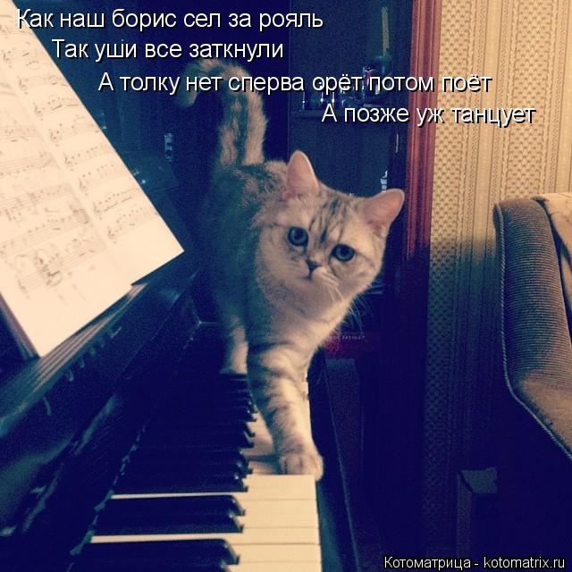 Котоматрица: Как наш борис сел за рояль Так уши все заткнули А толку нет сперва орёт потом поёт А позже уж танцует
