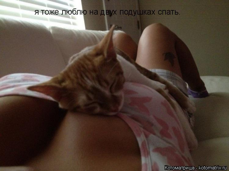 Котоматрица: я тоже люблю на двух подушках спать.