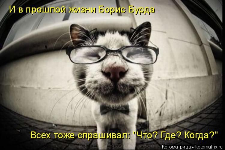 """Котоматрица: И в прошлой жизни Борис Бурда Всех тоже спрашивал: """"Что? Где? Когда?"""""""