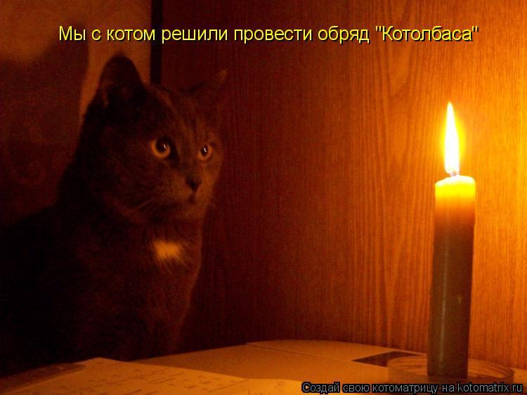 """Котоматрица: Мы с котом решили провести обряд """"Котолбаса"""""""