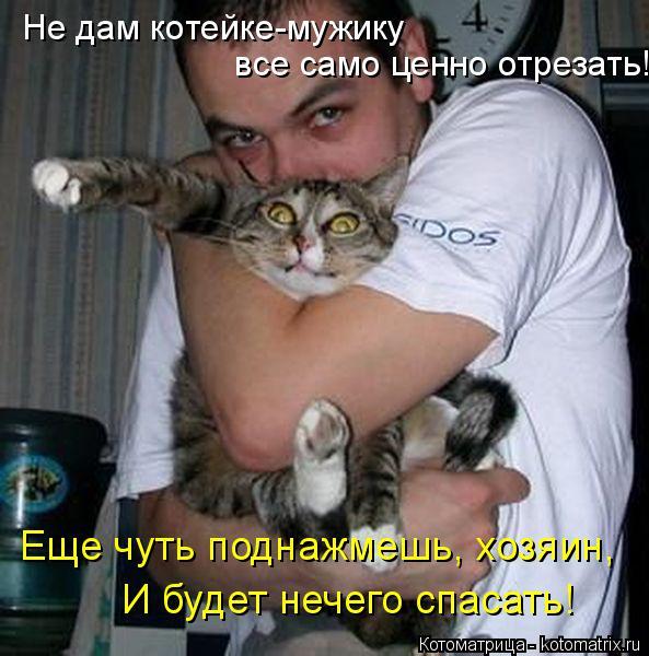 Котоматрица: Не дам котейке-мужику  все само ценно отрезать! Еще чуть поднажмешь, хозяин, И будет нечего спасать!