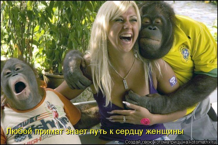 Котоматрица: Любой примат знает путь к сердцу женщины
