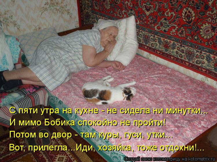 Котоматрица: Вот, прилегла...Иди, хозяйка, тоже отдохни!... С пяти утра на кухне - не сидела ни минутки... И мимо Бобика спокойно не пройти! Потом во двор - там