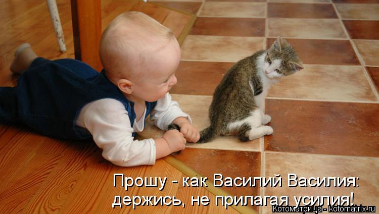 Котоматрица: Прошу - как Василий Василия: держись, не прилагая усилия!