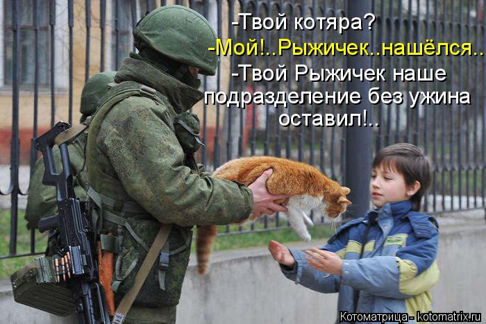 Котоматрица: -Твой котяра? -Мой!..Рыжичек..нашёлся... -Твой Рыжичек наше  подразделение без ужина  оставил!..