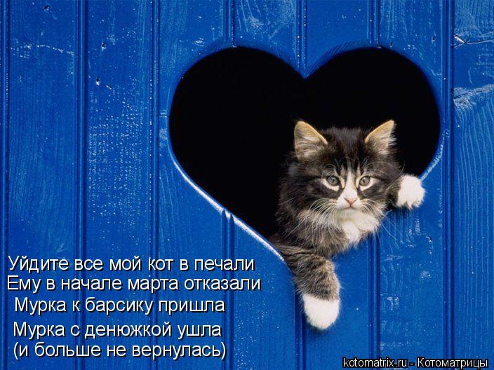 Котоматрица: Уйдите все мой кот в печали Ему в начале марта отказали Мурка с денюжкой ушла Мурка к барсику пришла (и больше не вернулась)