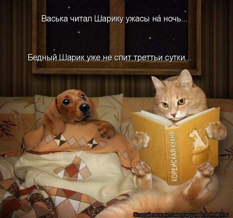 Котоматрица: Васька читал Шарику ужасы на ночь... Бедный Шарик уже не спит треттьи сутки...