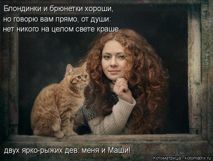Котоматрица: Блондинки и брюнетки хороши,  но говорю вам прямо, от души: нет никого на целом свете краше двух ярко-рыжих дев: меня и Маши!