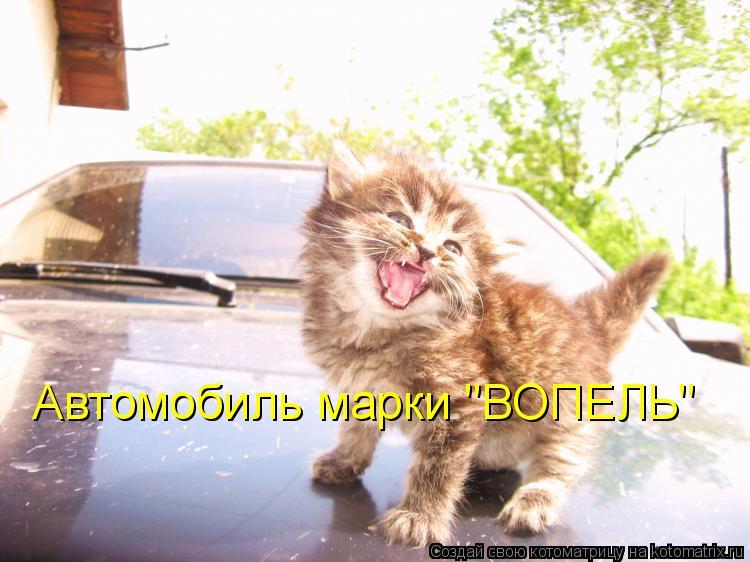 """Котоматрица: Автомобиль марки """"ВОПЕЛЬ"""""""